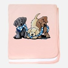 Lab Play baby blanket