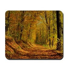 Autumn Forest Trail Mousepad