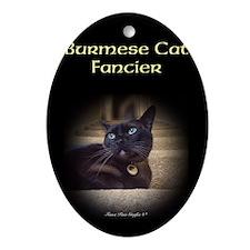 Burmese Cat (FancieR) Ornament (Oval)