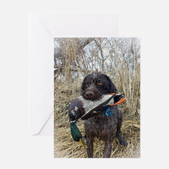 German wirehaired pointer calendar Greeting Card