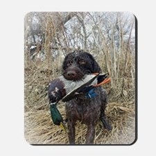 German wirehaired pointer calendar Mousepad
