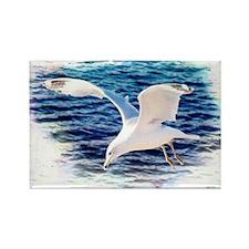 Seagull Rectangle Magnet