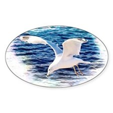 Seagull Decal
