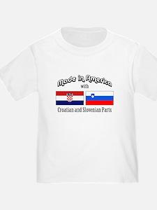 Croatian-Slovenian T