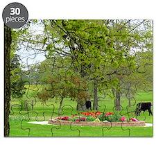 Calves grazing beside tulip garden Puzzle