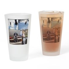 german wirehaired pointers Drinking Glass