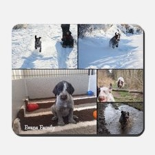 german wirehaired pointers Mousepad