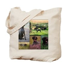 Pictures1 Tote Bag
