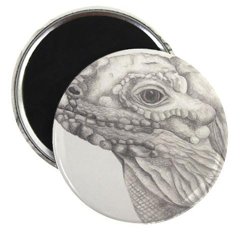 Rhino Iguana Magnet