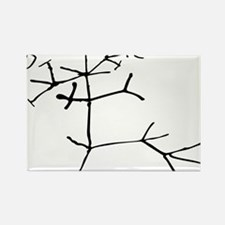 Darwin Tree Rectangle Magnet