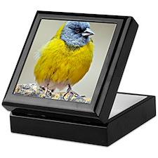 Bird at Sierra de las Quijadas Nation Keepsake Box