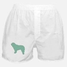 Paisley SWD Boxer Shorts