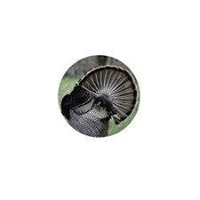 Shake Your Tail Feathers Mini Button