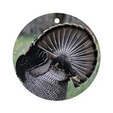 Shake Your Tail Feathers Round Ornament