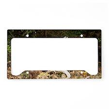 turkeylaptop License Plate Holder