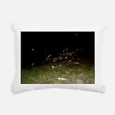 Sea Oats And Spirit Orbs Rectangular Canvas Pillow