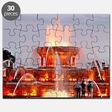Buckingham Fountain Puzzle