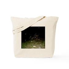 Sea Oats And Spirit Orbs Tote Bag