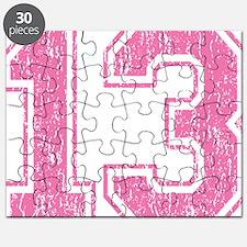 Retro 13 Pink Puzzle