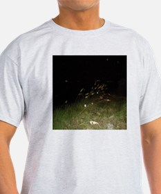 Sea Oats And Spirit orbs T-Shirt