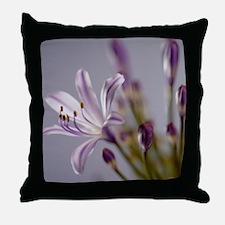 Agapanthus 'Donau' Throw Pillow