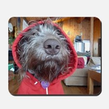 Puppy as Red Riding Hood Mousepad