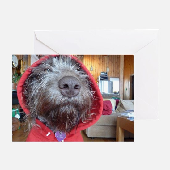 Puppy as Red Riding Hood Greeting Card