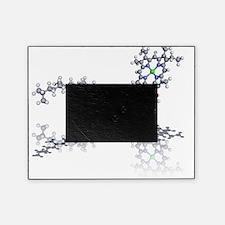 Chlorophyll molecule Picture Frame