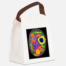Chlamydomonas alga Canvas Lunch Bag