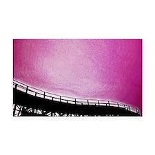 Roller Coaster in Pink Rectangle Car Magnet