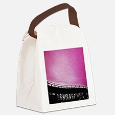Roller Coaster in Pink Canvas Lunch Bag