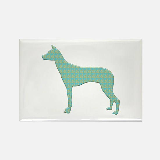 Paisley PIO Rectangle Magnet (100 pack)