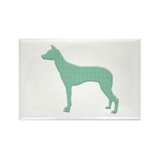 Paisley PIO Rectangle Magnet (10 pack)