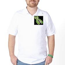 Chromosome, artwork T-Shirt