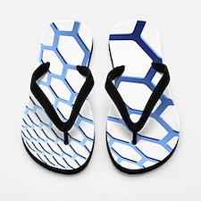 Graphene Flip Flops