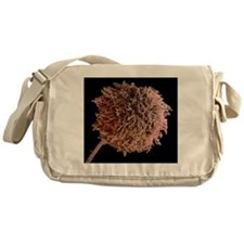 Fungal spores, SEM Messenger Bag