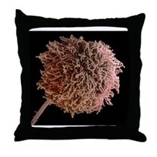 Fungal spores, SEM Throw Pillow