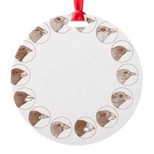 Galapagos finches, artwork Ornament