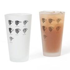 Galapagos finches, artwork Drinking Glass
