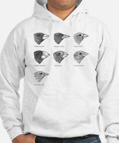Galapagos finches, artwork Hoodie