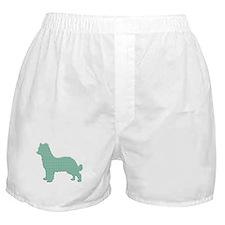 Paisley Pyrenean Boxer Shorts