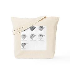 Galapagos finches, artwork Tote Bag