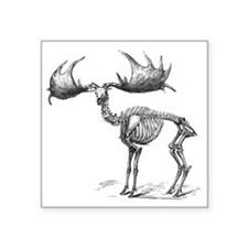"Giant deer, 19th century ar Square Sticker 3"" x 3"""