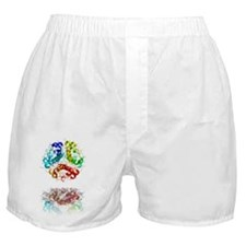 Insulin molecule Boxer Shorts