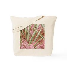 Hedgehog spines, SEM Tote Bag