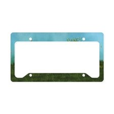 sf_20_12_o_wall_pell_449_H_F License Plate Holder