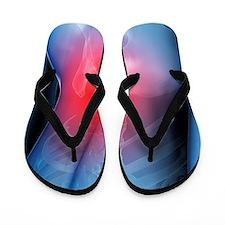 Lower back pain, conceptual artwork Flip Flops