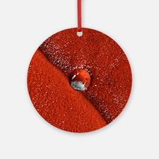 Martian impact crater, satellite im Round Ornament