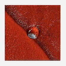 Martian impact crater, satellite imag Tile Coaster