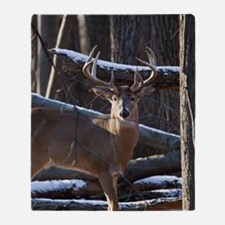 Trophy Whitetail Deer D1342-029 Throw Blanket